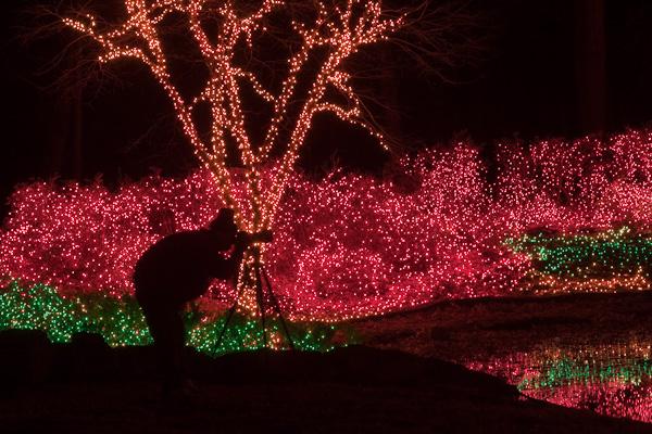 Christmas Lights _ Garden of Lights Muskogee OK  4 sec f/11
