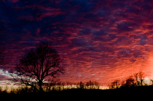 Striking Sunset at Sequoyah National Wildlife Refuge
