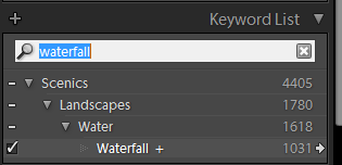 how to use keywords lightroom
