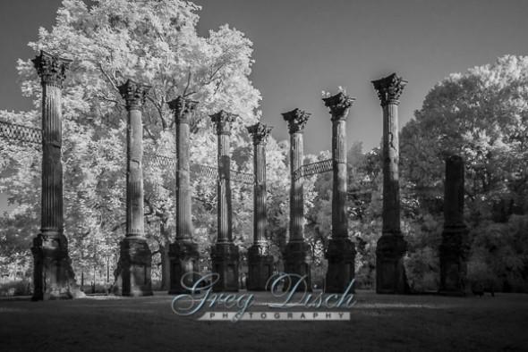 Windsor Ruins Port Gibson Mississippi 20140908-_MG_9253