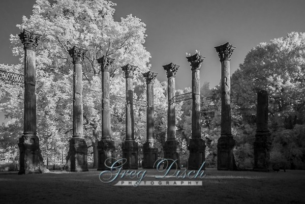 Windsor Ruins Port Gibson Mississippi 20140908-_MG_9253