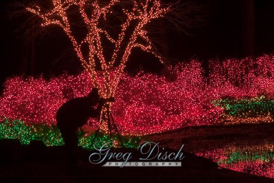 Garden of Lights Muskogee Oklahoma081228_MG_4406