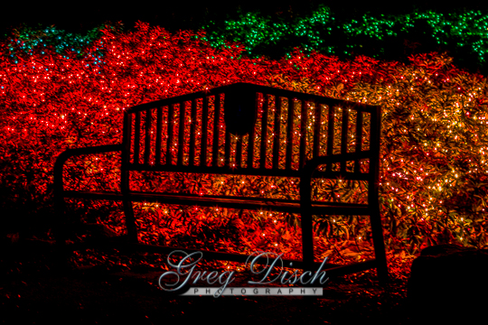 Garden of Lights Muskogee Oklahoma20131130-_MG_9253_4_5