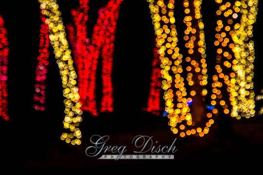 Garden of Lights Muskogee Oklahoma20131130-_MG_9426