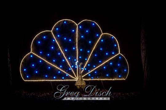 Holiday Lights - Garvan Woodland Gardens20131203-_MG_0058