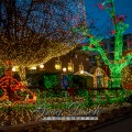 Lights of the Ozarks Fayetteville Arkansas20131204-_MG_0137