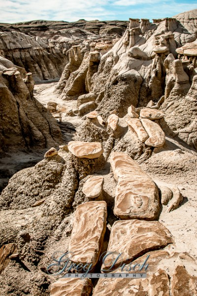 Bisti - De-Na-Zin Wilderness Area New Mexico 20150124-_MG_1470