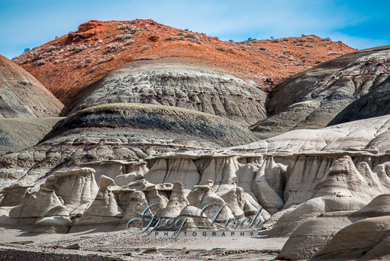 Bisti - De-Na-Zin Wilderness Area New Mexico 20150124-_MG_1788_89_90