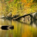 Fall Color Workshop on the Buffalo National River in Arkansas.