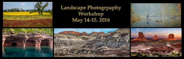 landscape workshop