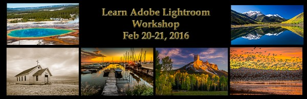 learn adobe lightroom